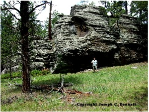 The Biggest Out of Place Artifacts Ever? Immense, Stupendous Petrified Trees of the Black Hills, South Dakota